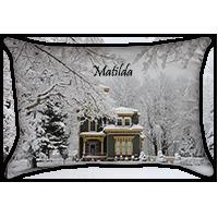 Indoor - Outdoor Pillow 14 x 20